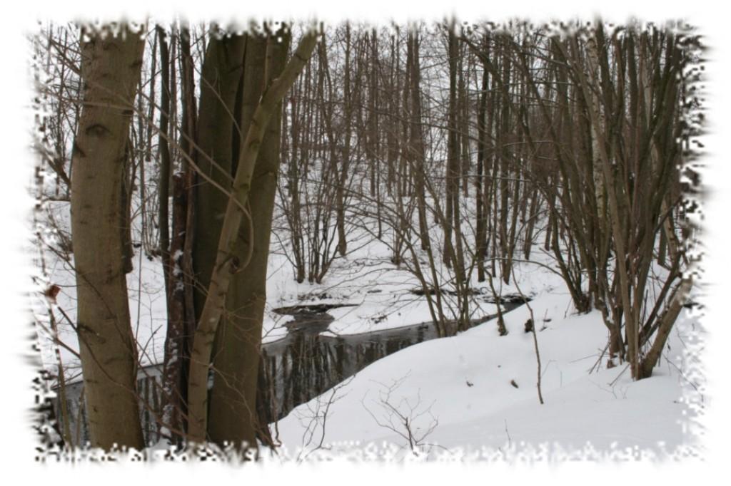 ...entlang des Herrnsdorfer Baches, ...