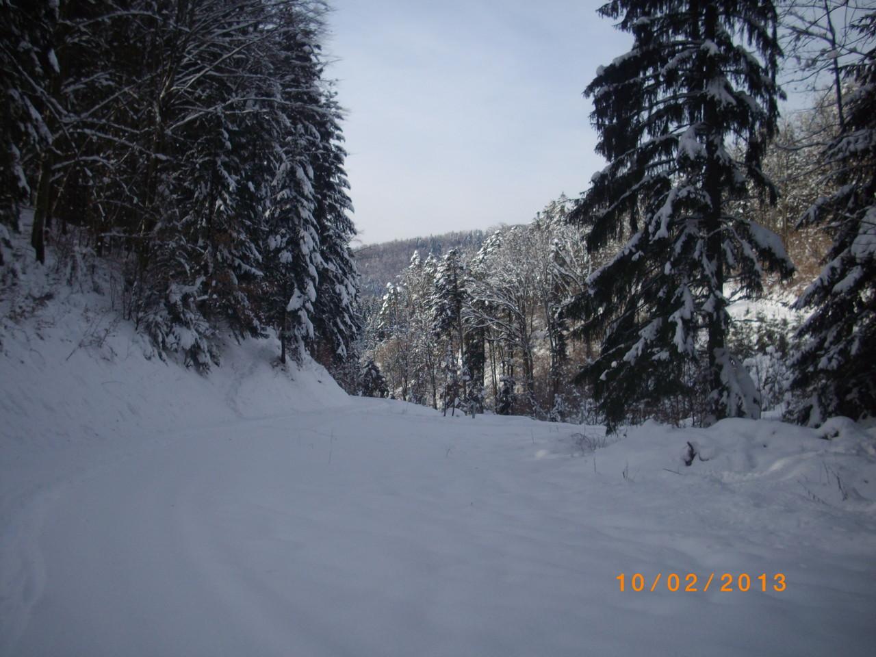 Wolfristhütte N 47° 39.354 E 007° 54.906