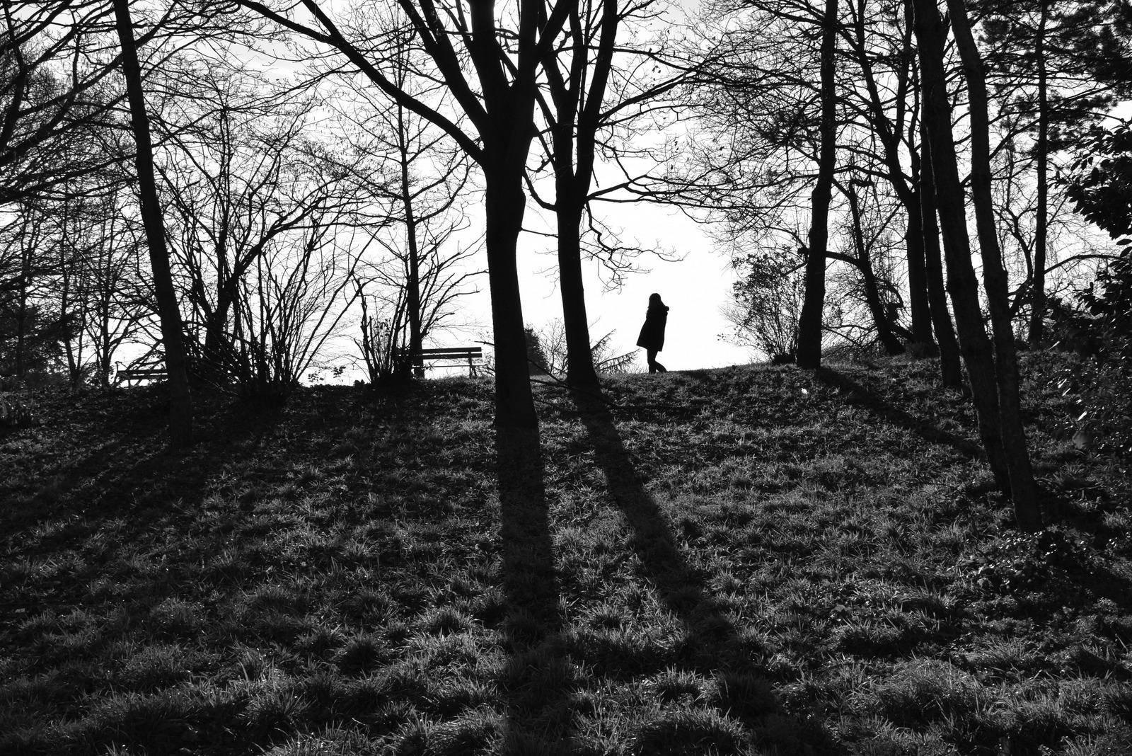 Lumières - Parc Ballanger - Photo - Constant JOSSE