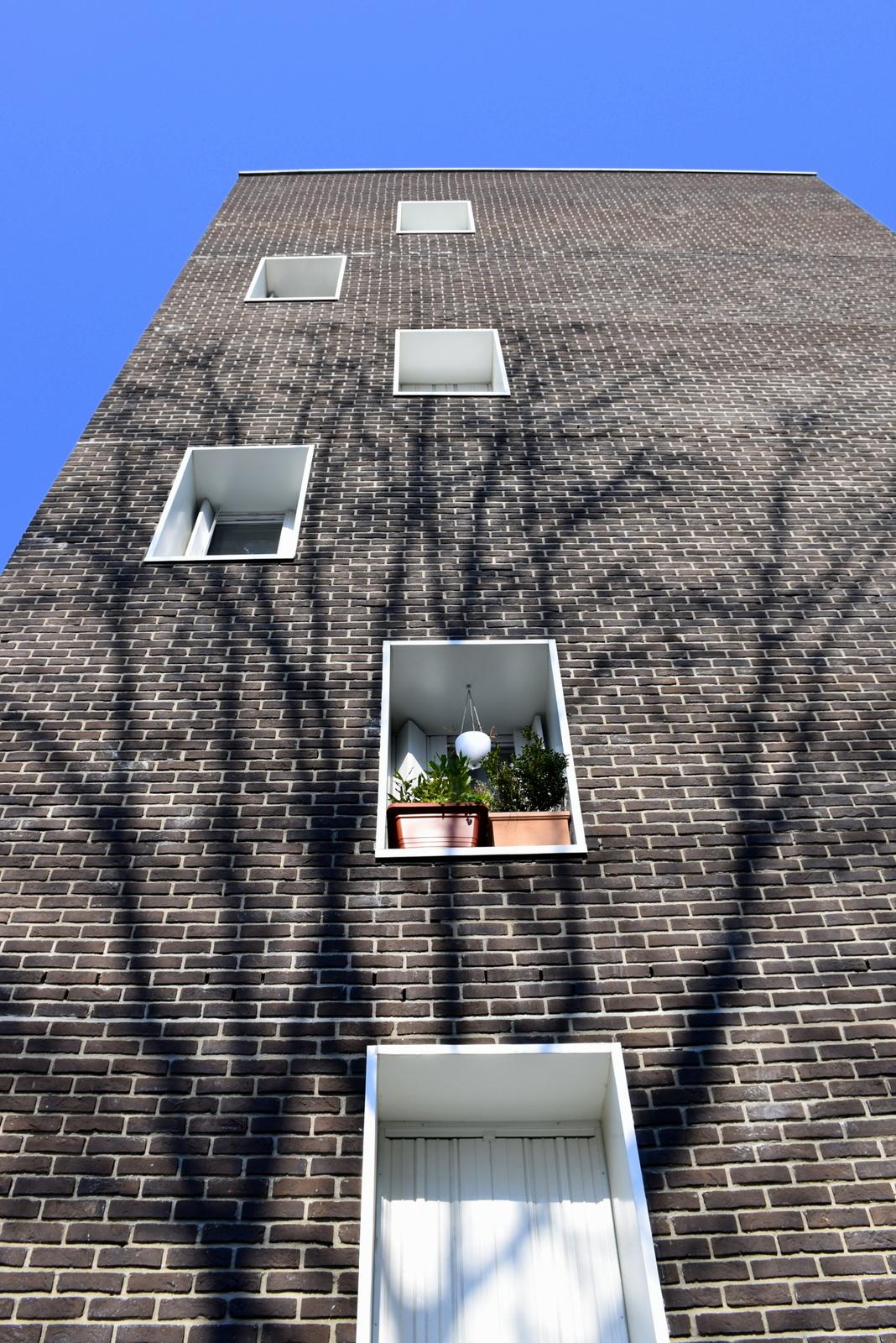 Fenêtre sur cour - Photo - Constant JOSSE