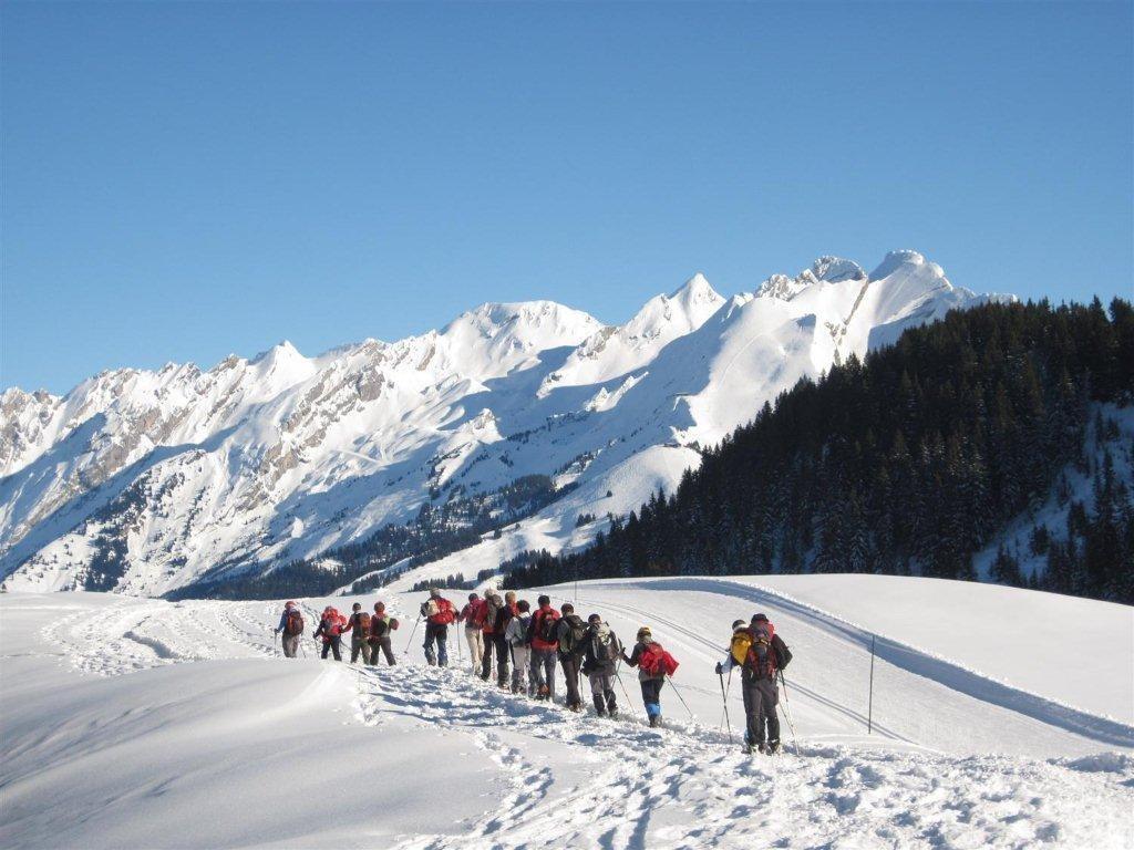 Raquettes & Ski de fond - demi-journée