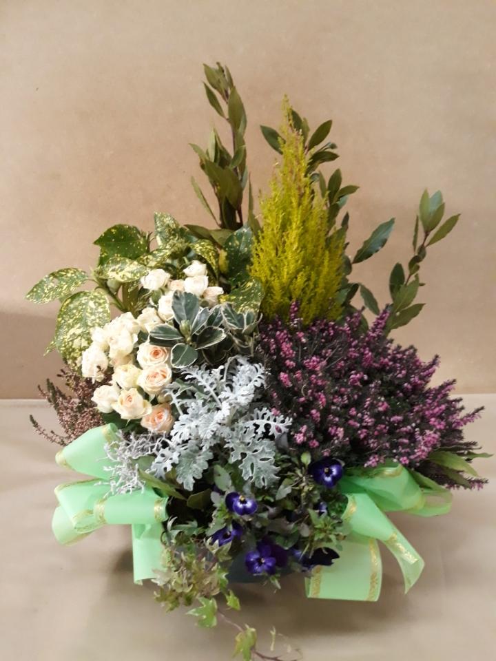 Composition de plantes fleuries tons parmes violets assorties de Conifère panachés