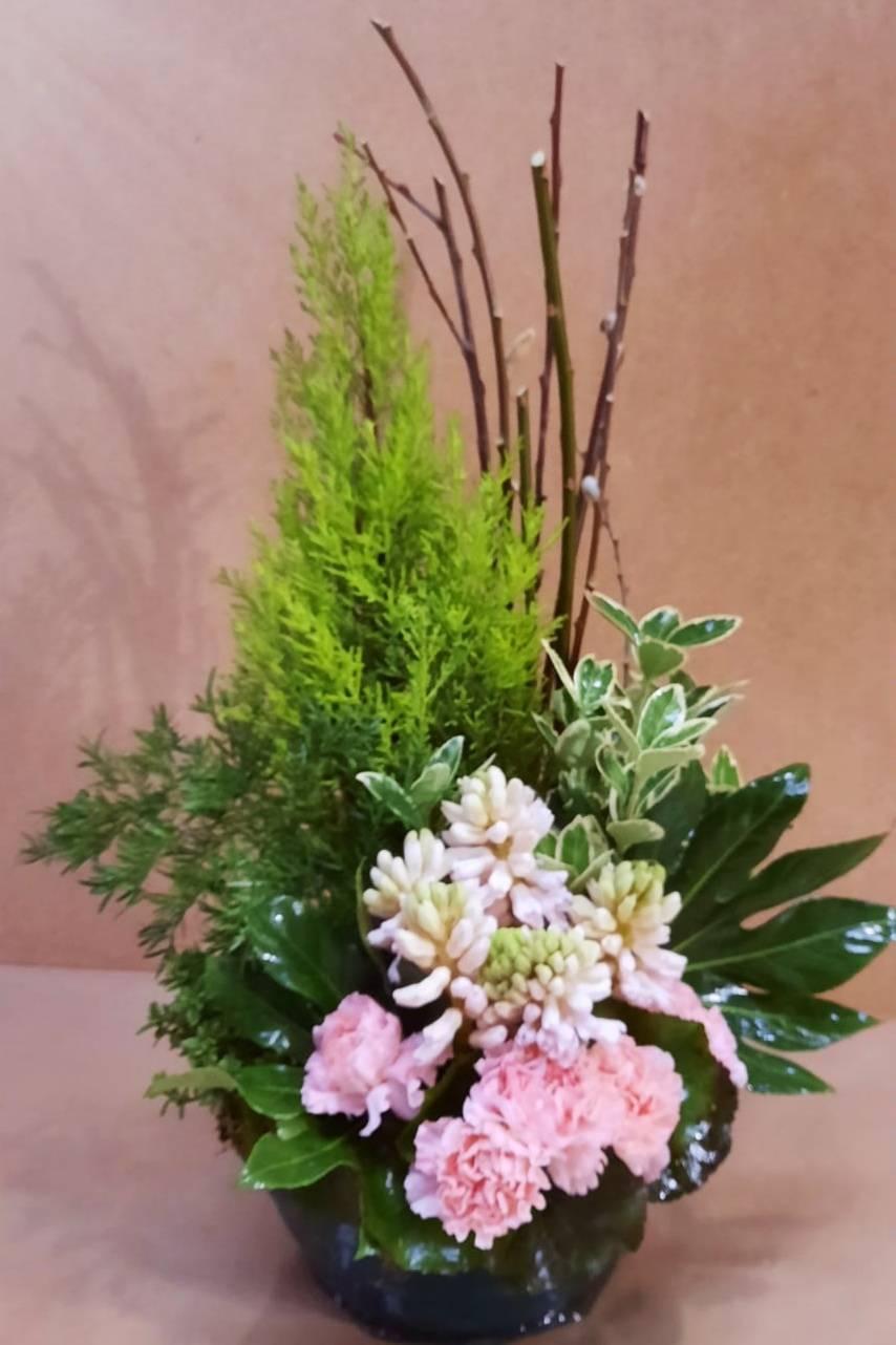 Composition de plantes fleuries tons roses assorties de Conifère panachés