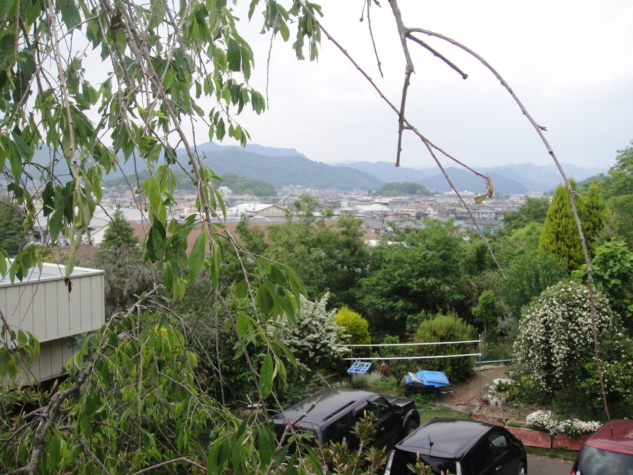 今日は、曇ってますが、晴れた日は、男体山がよ~く見えます。