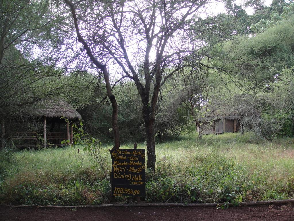 ンダラクワイキャンプの回り木の上には見た事無い小動物や真白い羽根のついたような猿色とりどりな野鳥インコが、あちらこちらと、日本で言うと鳥かごに自分が、入っているかのようでした。