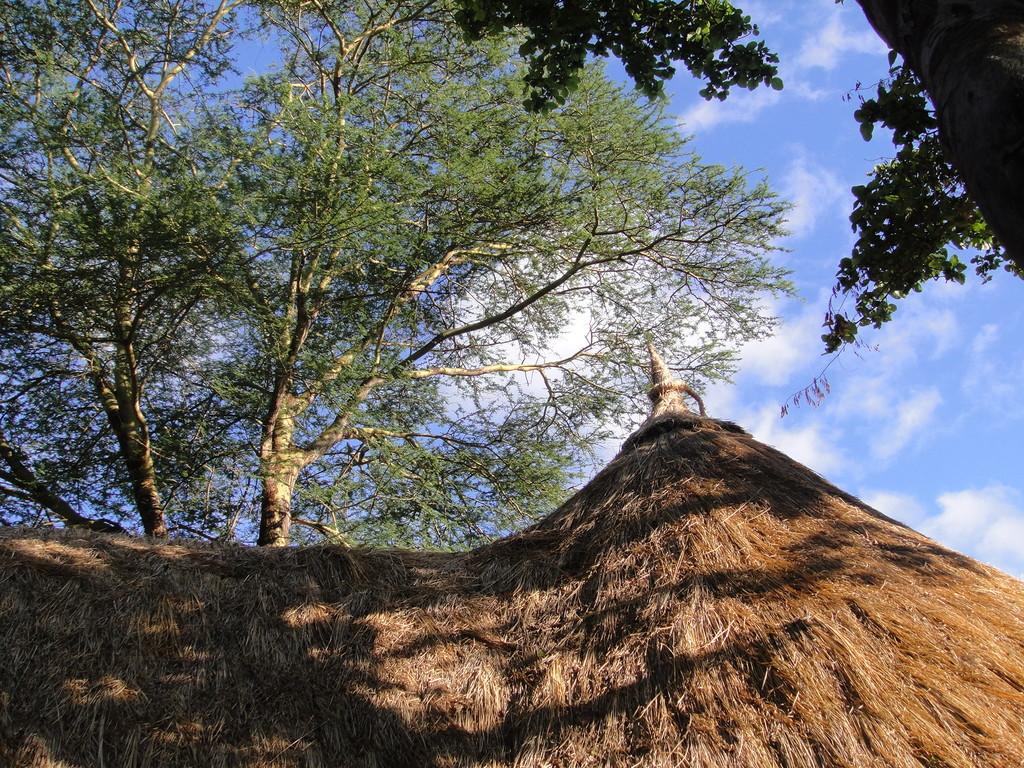 ンダラクワイキャンプのラウンジ見た真っ青な大空