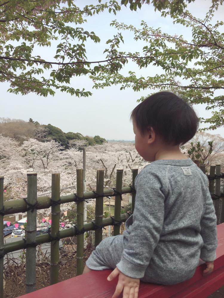 厚木 飯山公園