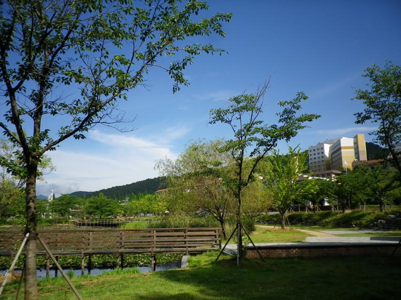 敷地がとにかく広い。そして自然がいっぱいの大学。
