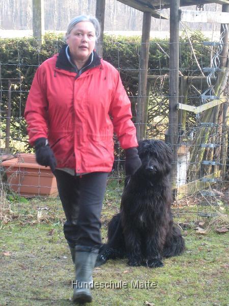 Die Hundeschule Matte bietet Junghunde-Kurse in der Umgebung von Herzogenbuchsee, Langenthal, Oensingen, Koppigen, Wiedlisbach, Niederbipp, Gerlafingen, Aarwangen an.
