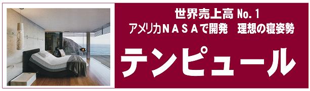 テンピュール 世界売上高No.1 アメリカNASAで開発