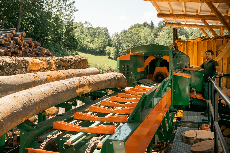 Zuförderung der Holzstämme