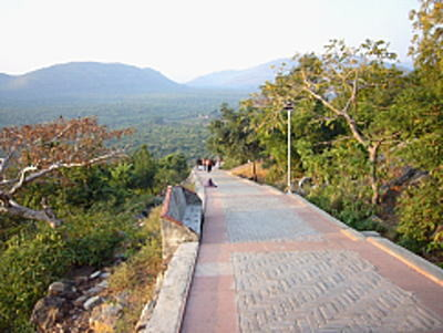 """""""The Way of King Vinbisara"""" An approach to the summit of Mt. RYOJUSEN, which King Binbisara of the Magada Kingdom used to hear the narrative of the Buddha. It is being repaired now, but some traces at the time are left."""