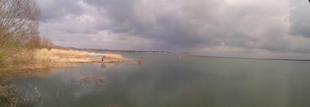 Lac du Der le 06 mars 2016