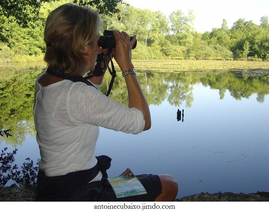 Une amoureuse des oiseaux du Lac du Der