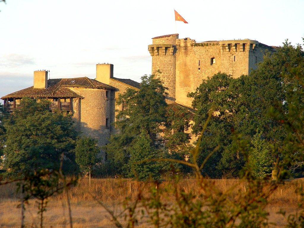 Tennessus medieval castle bed and breakfast in Autumn