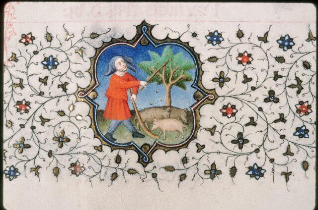 Glandée, Bréviaire à l'usage de Paris, Bréviaire à l'usage de Paris, Châteauroux - BM - ms. 0002 - f. 006v, Vers 1414