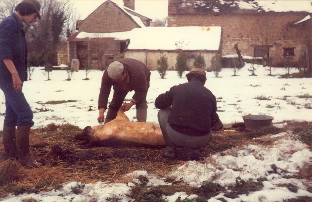 Racler les soies du cochon, Chabannes, commune de Tilly, (Indre),collection particulière, 1987
