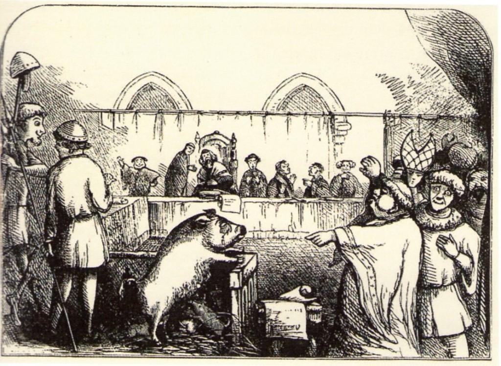 Procès d'un cochon, Gravure du XIXe siècle, collection Jonas/kharbine-Tapabor