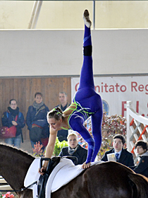 klick ... (c) vaulting-photos.de