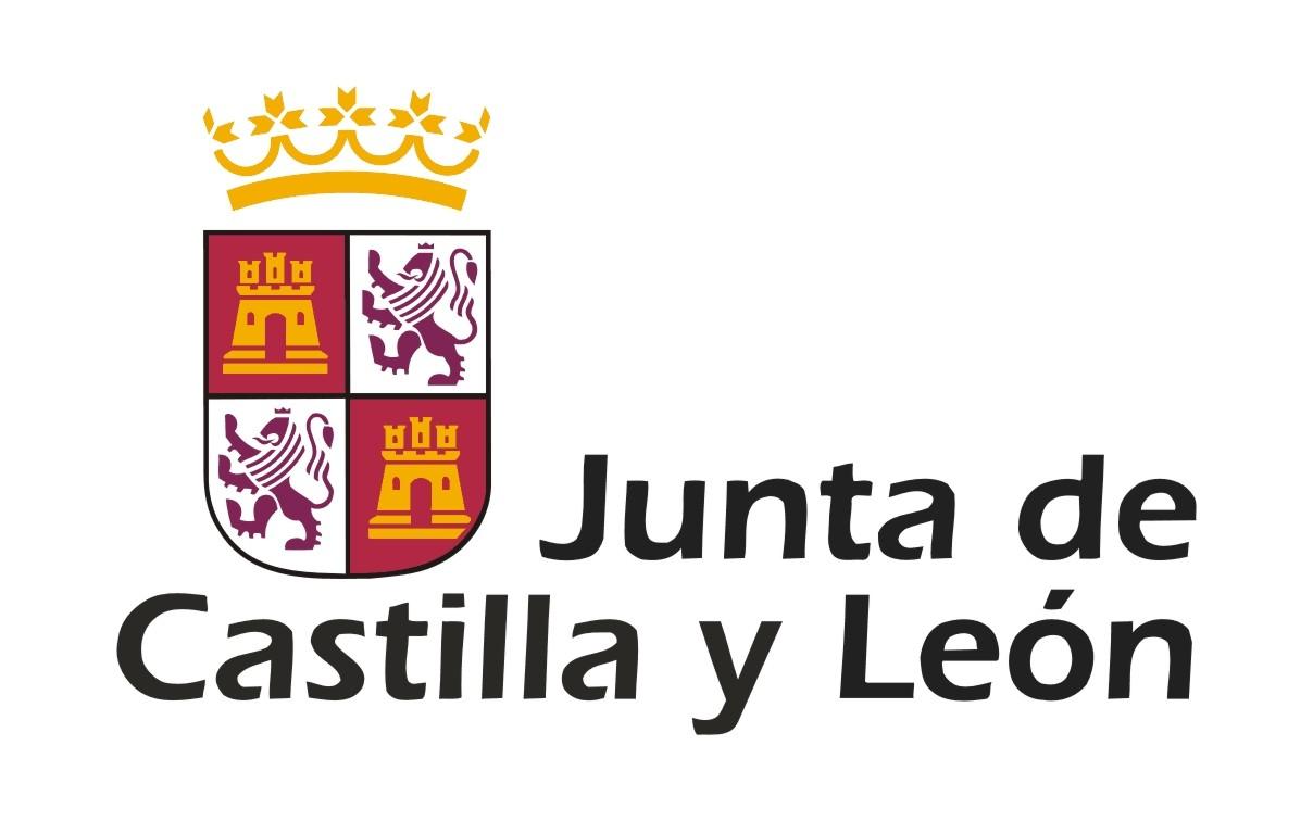 Junta de Castilla y Leon. Dirección General de Patrimonio