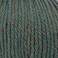 Merino Shetland 102 - Vert Multicolore