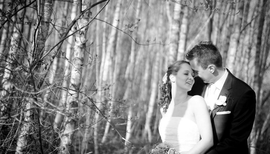 Hochzeit Bremen, Hochzeitsfortograf Bremen, Hochzeitsfotograf Stuhr, Hochzeit Oldenburg, Braut, Brautkleid, Hochzeit im Wald, Kreuz Meyer, Sabine Lange, Biene-Photoart