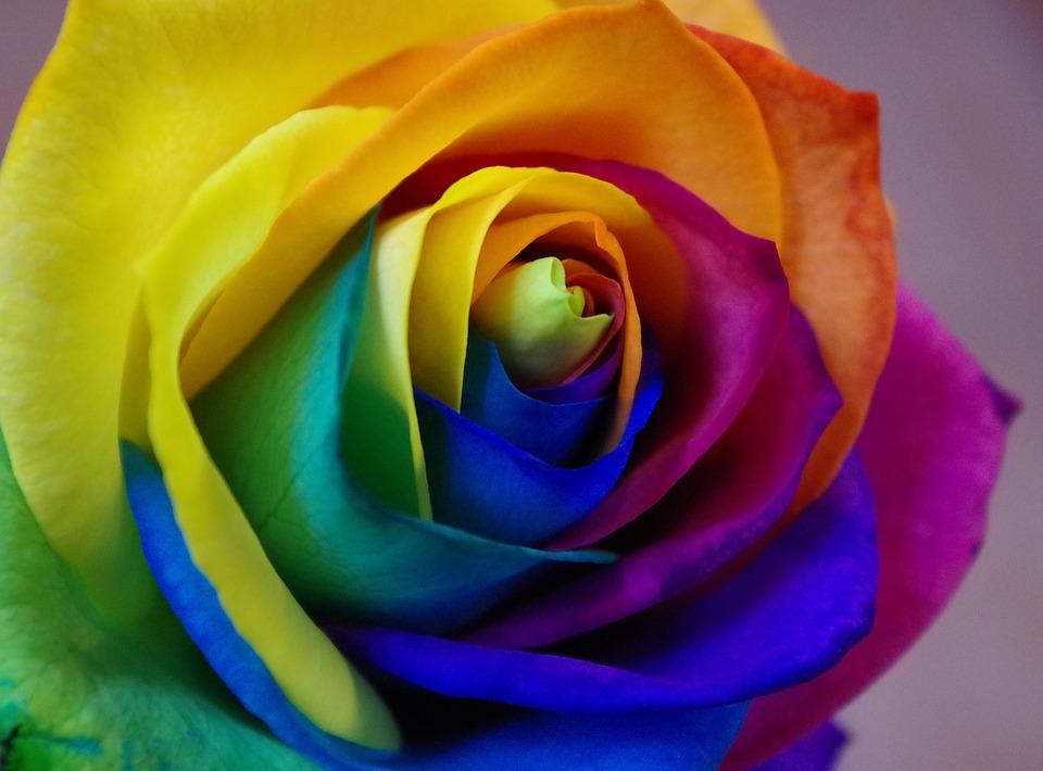 Farbpalette: Violett bis Gelb