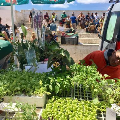 Ibiza samstags kaufen und tauschen in Sant Jordi