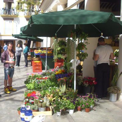 Frische Blumen vom alten Markt in Ibiza