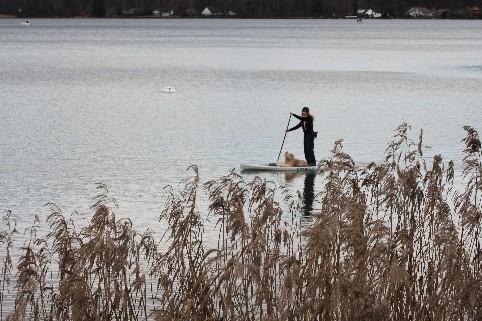 Mit dem Stand Up Paddle Board und Hund entlang der St. Petersinsel am Bielersee