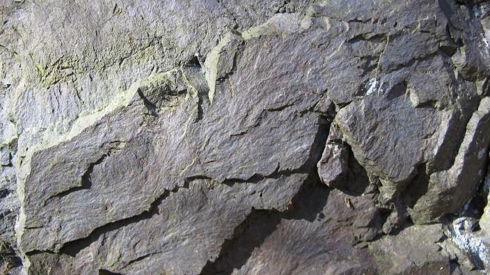 Graublauer Mylonit
