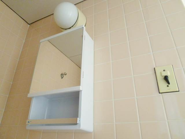 洗面台上部にはミラーボックス