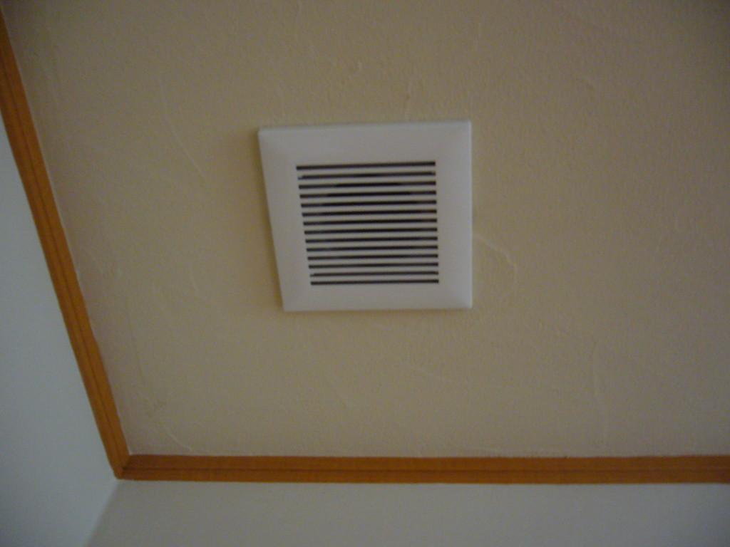 天井 自然素材珪藻土を使用~調湿、消臭効果に最適 金ゴテあらしの模様入れ