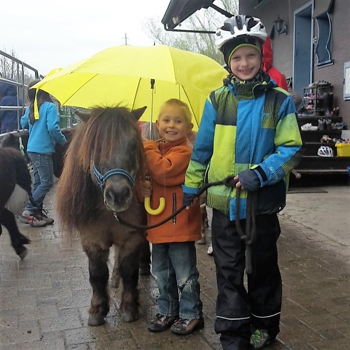 Tierbegegnung mit Ponys im Grenzland