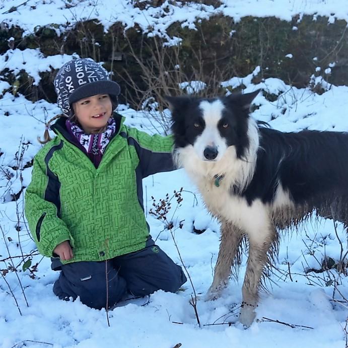 Tierbegegnung mit Hund Kira im Grenzland