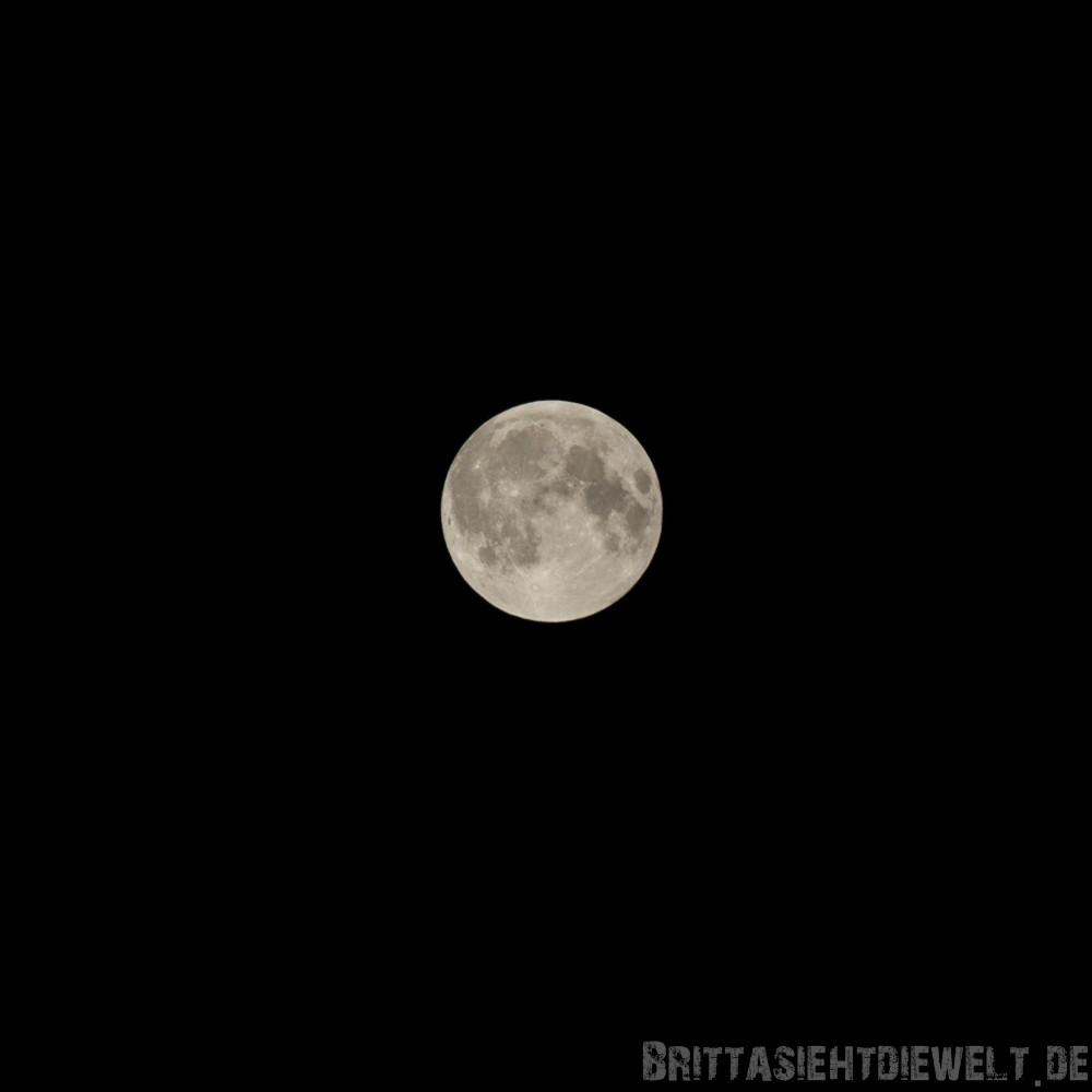 Der Mond am Abend zuvor.