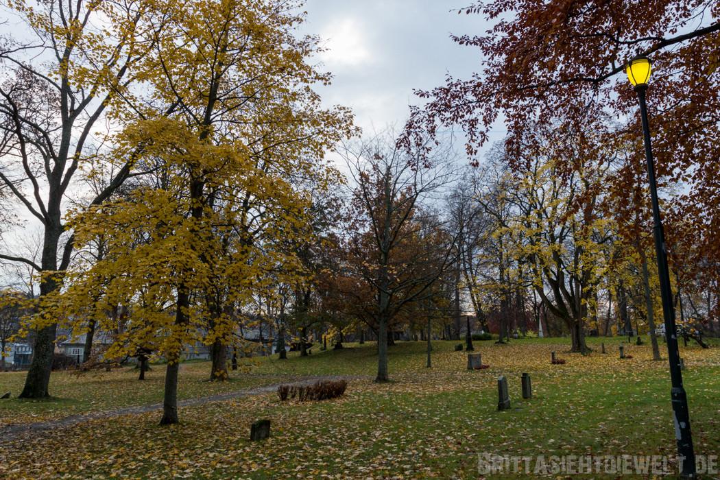 Friedhof am Dom