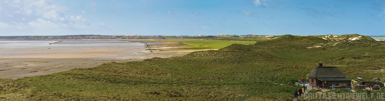 Panoramablick über Amrums Westen mit Vogelwärterhäuschen