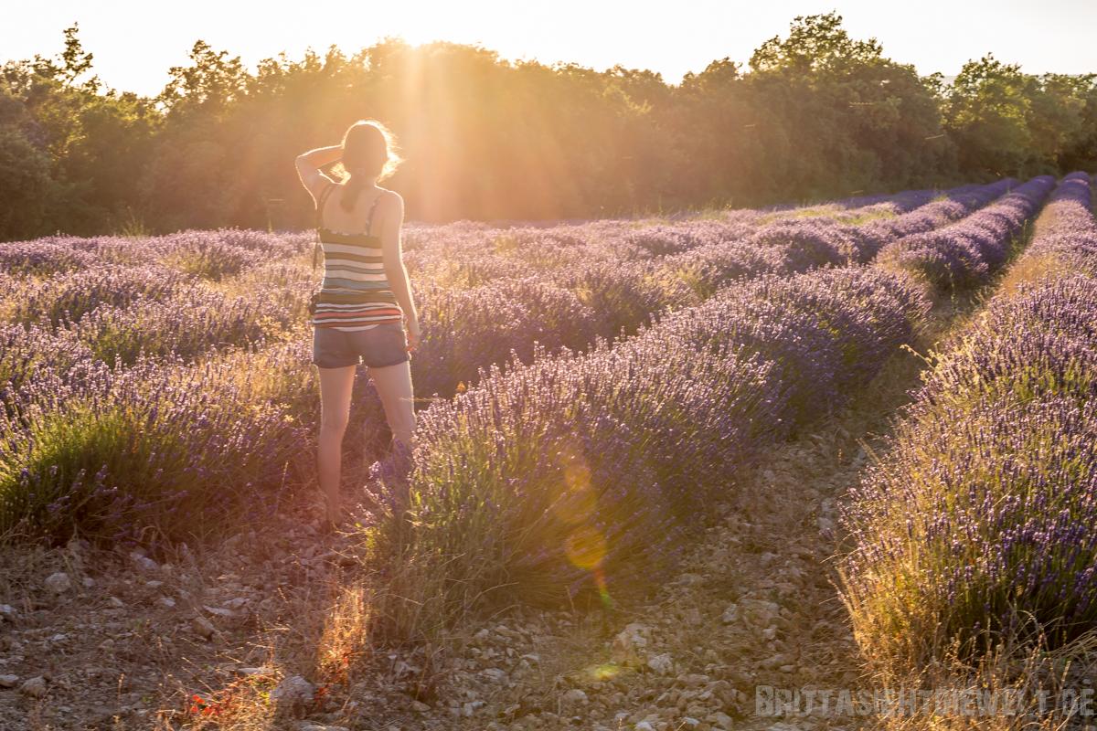 Provence, das solltest du nicht verpassen - Tipps+Infos