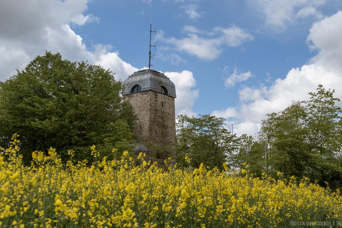 möhnesee, bismarckturm, wandern, sauerland, highlights, see, nrw, sehenswürdigkeiten