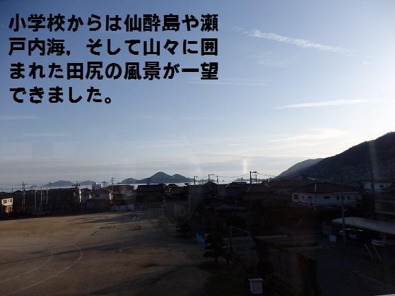 田尻町では,人もなんきんも育っています!
