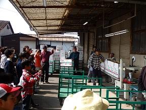箕島園芸組合の組合長には選果の様子も見せてもらいました。早技に子どもたちの視線釘づけ!