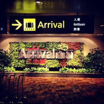 シンガポール チャンギ国際空港(写真:株式会社ステキ)