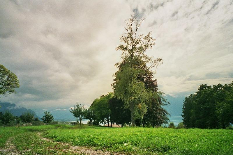 Blonay 2007 © Eri Mantani