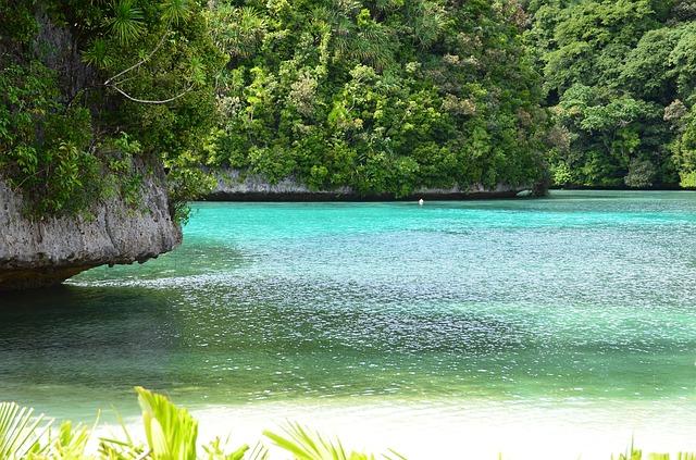 Praia De Palau Golfinho - REPÚBLICA DE PALAU
