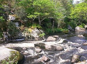 Rivière Ellé