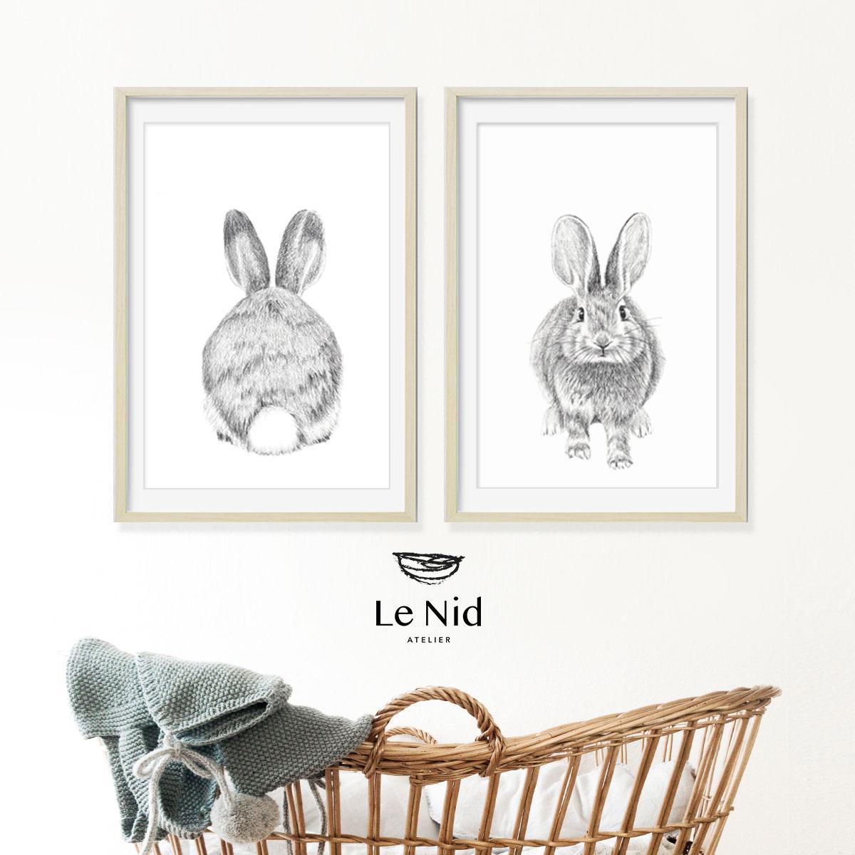 Duo de lapins