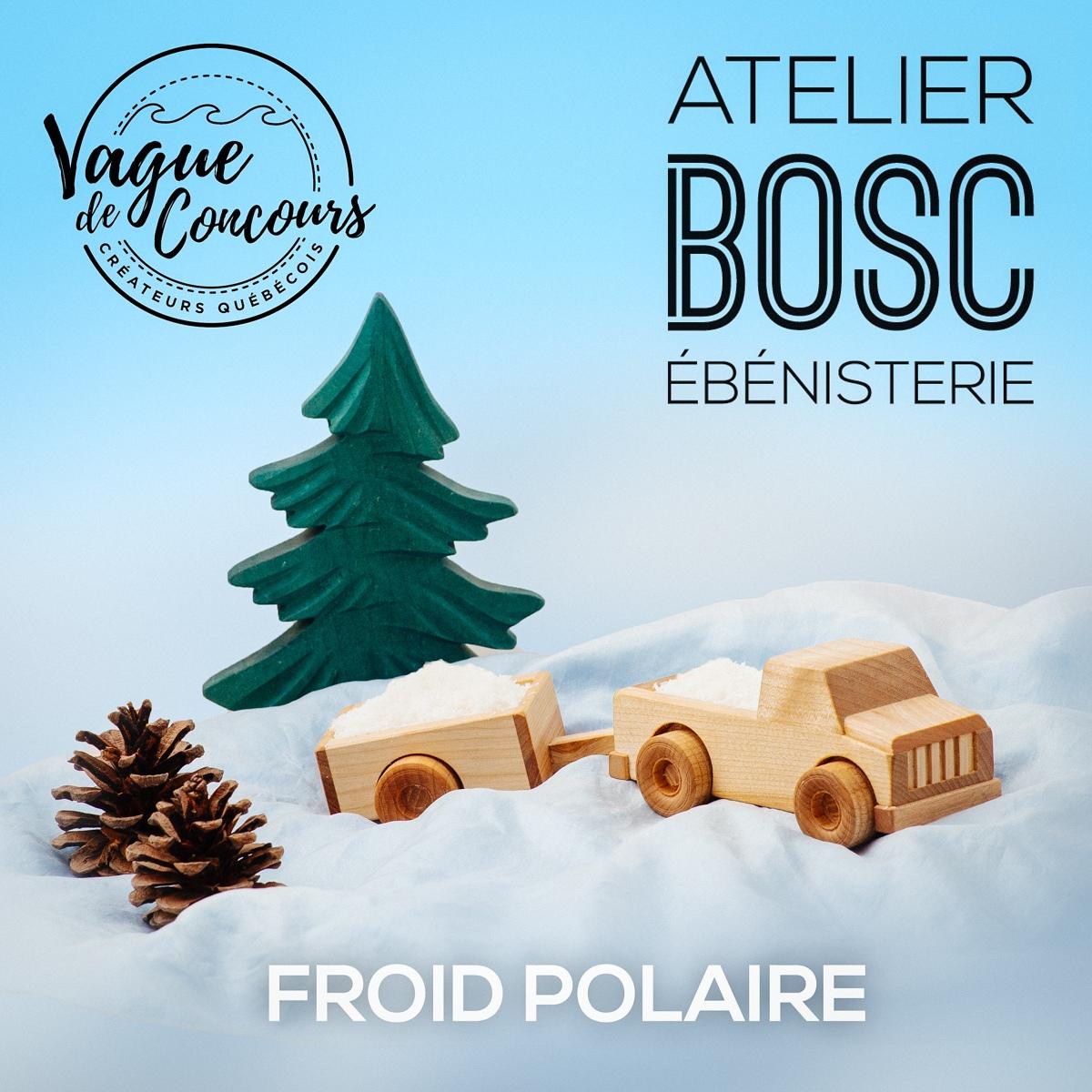 """2ième prix """"Surfer d'Or"""" 17e édition : Froid polaire"""