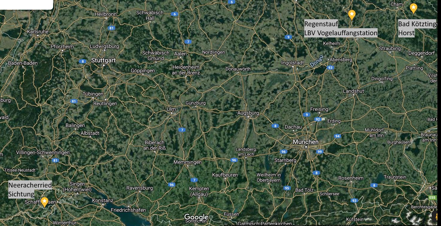 Stationen des Jungstorches aus Bad Kötzting, Google Maps