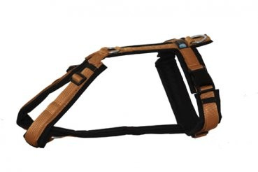 anny x fun geschirr beige pfotenshop sellmecke. Black Bedroom Furniture Sets. Home Design Ideas